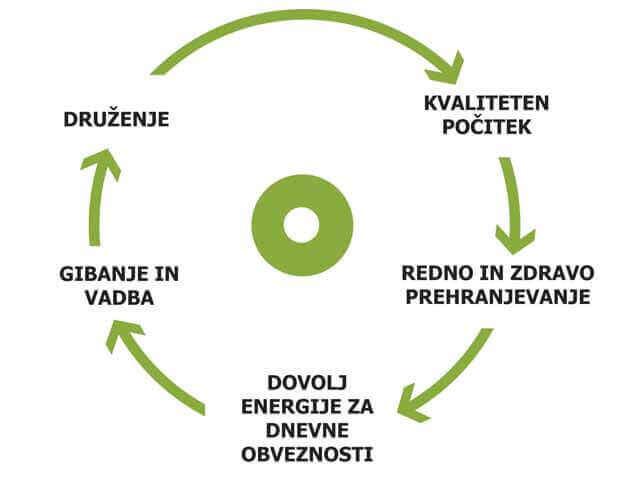 zdravo zivljenje - diagram 1