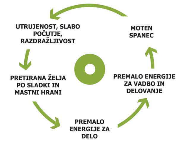 zdravo zivljenje - diagram 2
