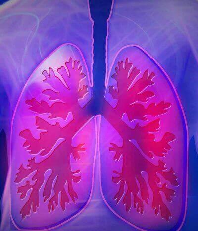 Zdrava dihala